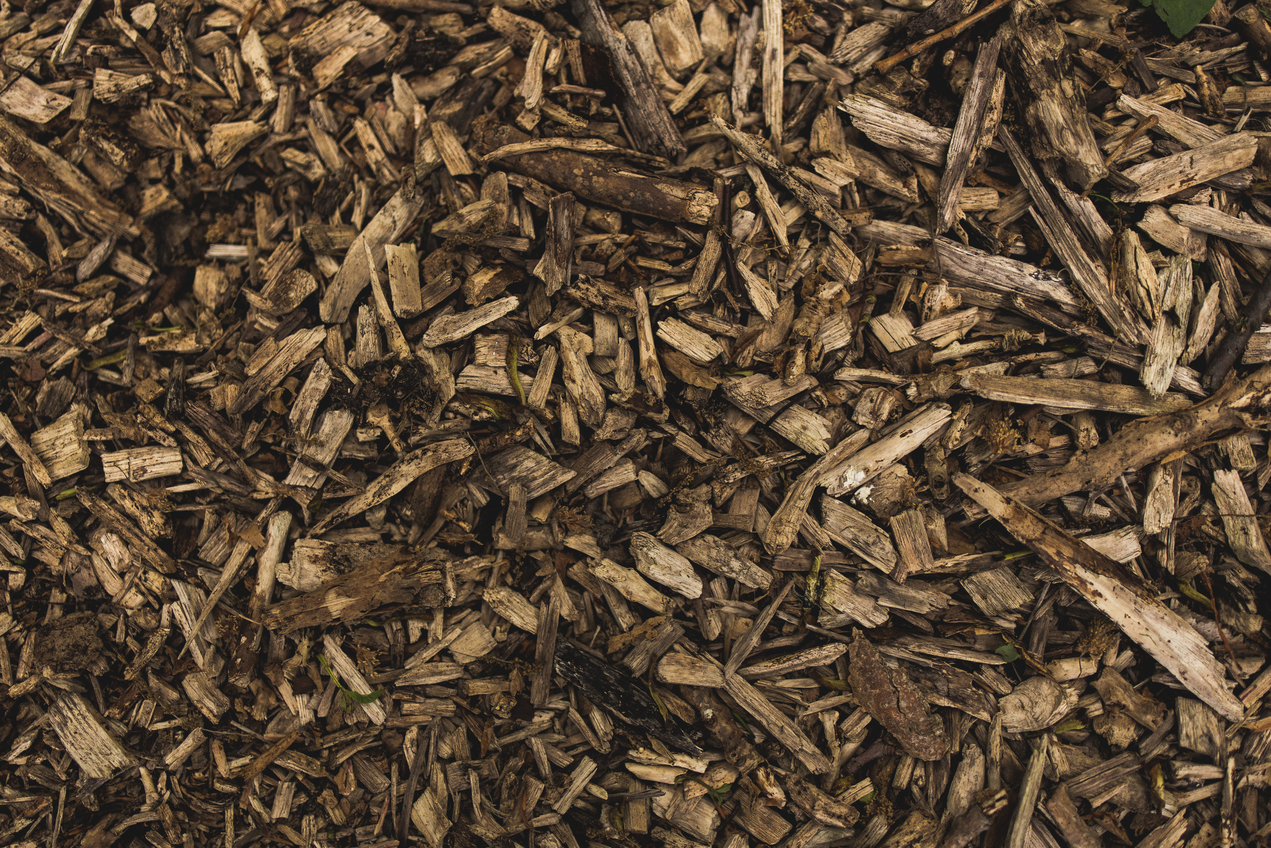 waste wood chips to energy