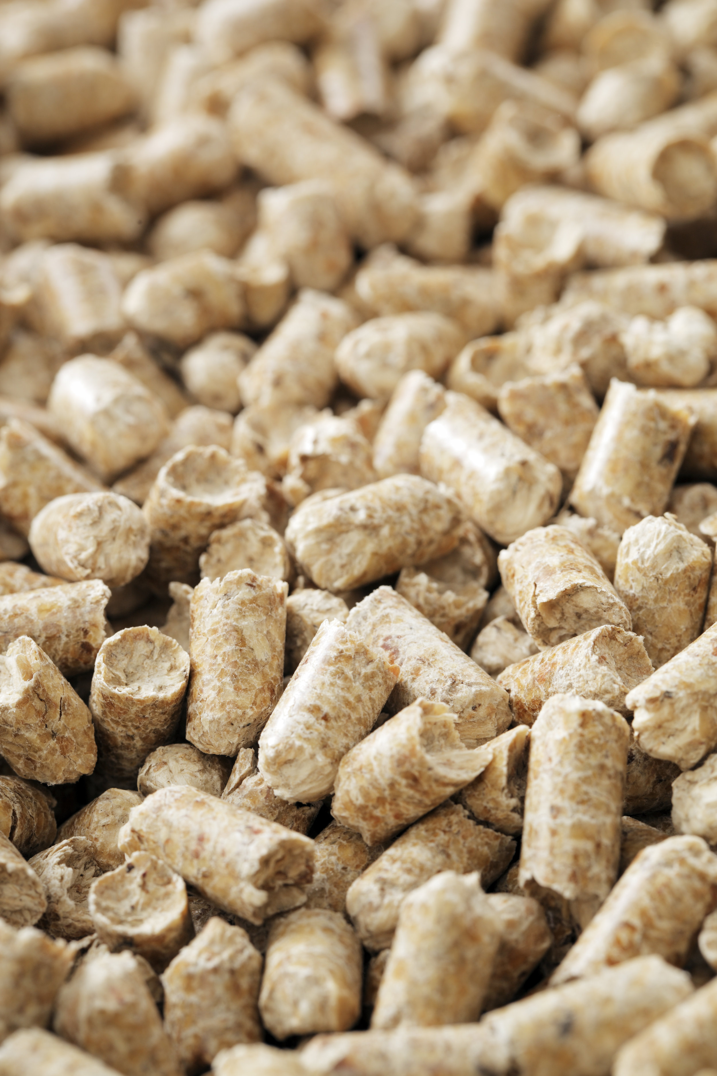 wood pellets to energy