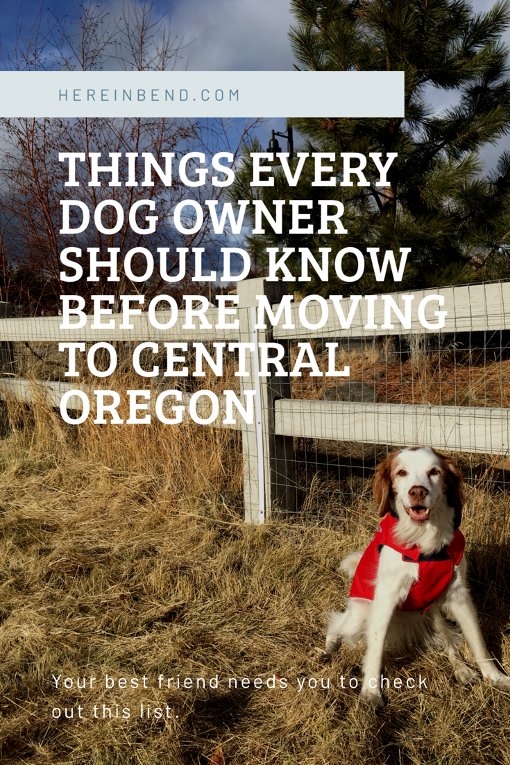 Things every dog owner should know before moving to Central Oregon