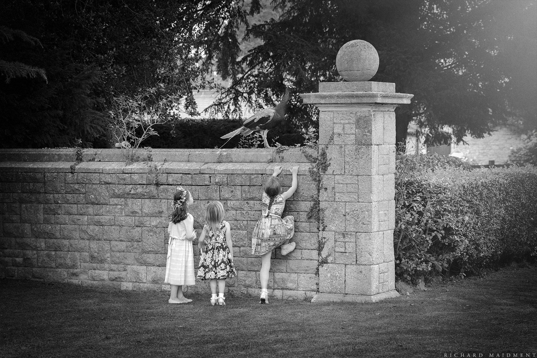 Richard Maidment - Wedding Photography (46).jpg