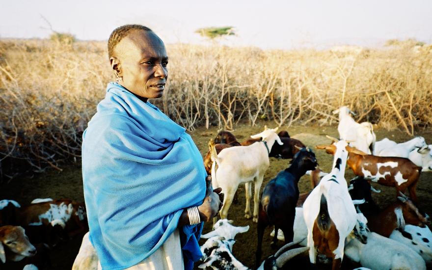 Goat-Herder,-Samburu-village,-Kenay.jpg