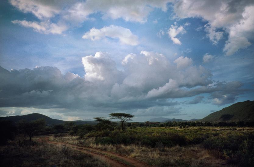 Road,-Samburu.jpg