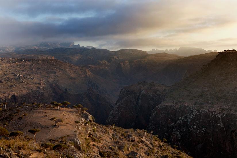 Morning-Valley-Socotra.jpg