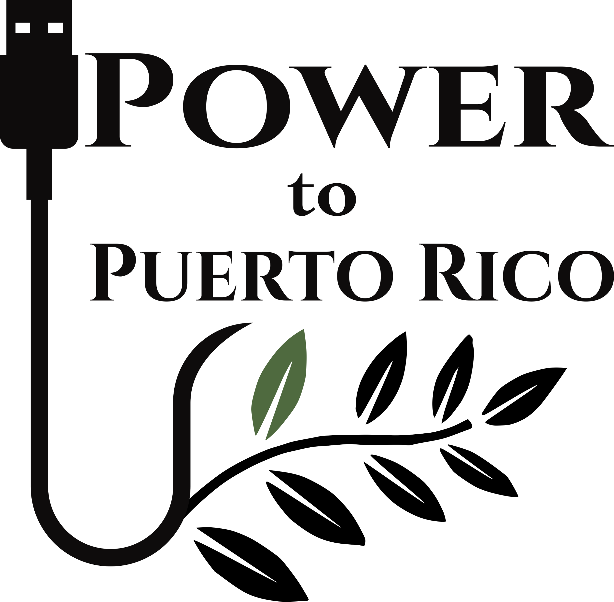 www.PowerToPuertoRico.org  - Power to Puerto Rico is a 501(c)3 non-profit dedicated to bringing renewable energy to Puerto Rico and the Caribbean.
