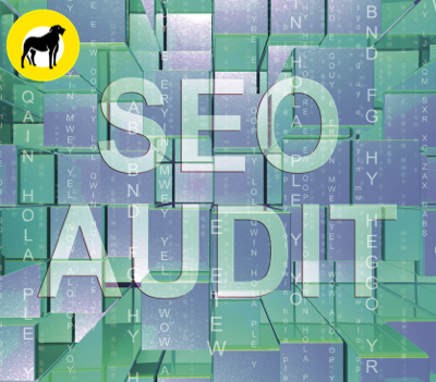 Canva - WOLFHOUND-DIIGITAL-Seo Audit Website Ranking Assessment -min.png