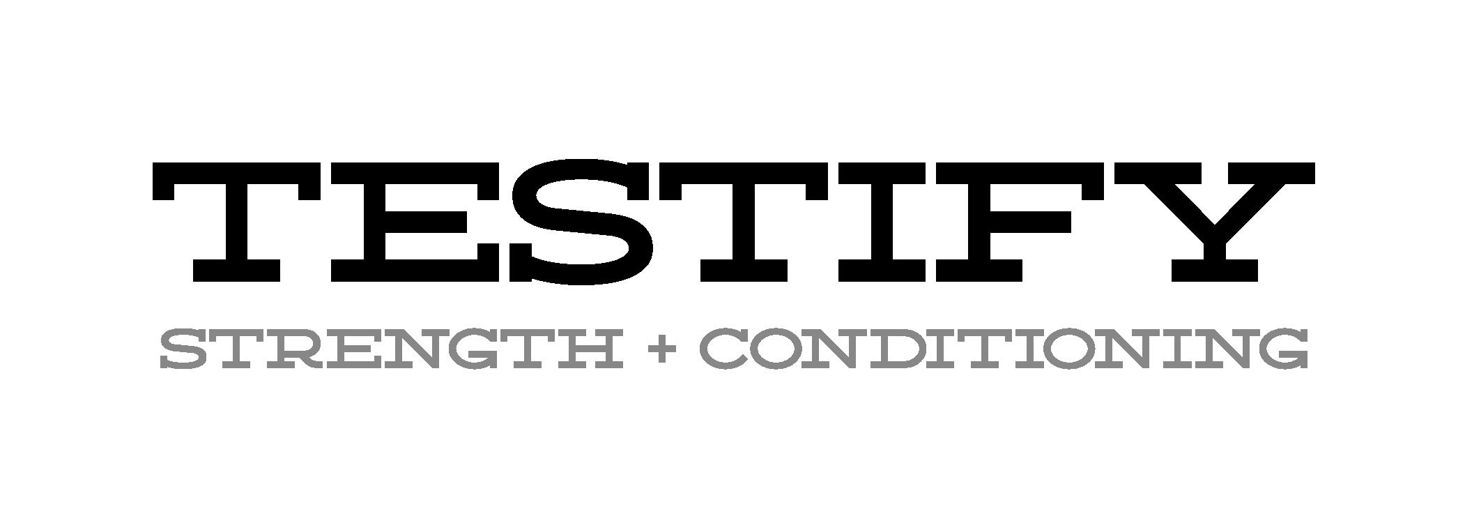 Testify Logo - Grayscale@4x.png