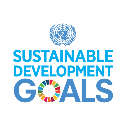 - In order to achieve sustainable development, Moyo Nua is proud to champion a number of the Sustainable Development Goals, as declared by the United Nations. These Goals are crucial in the international effort to benefit the world in a collaborative, constructive way.