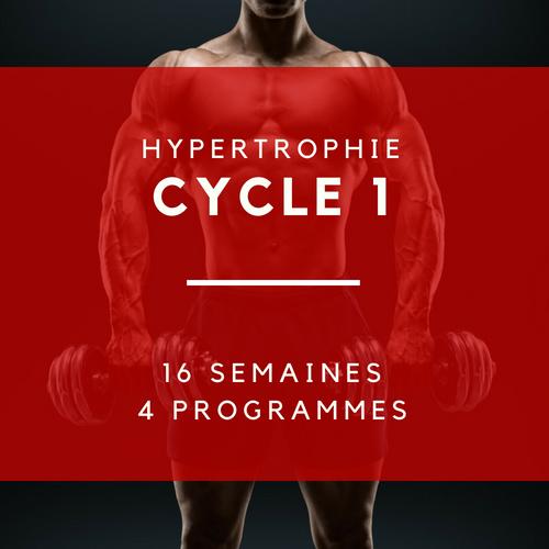 Programme 1 > Trisets 10/12/15 Programme 2 > Isométriques Programme 3 > Drop sets Programme 4 > 6,6,6,8,8  159,99$