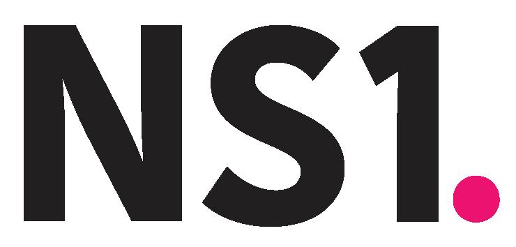 Ns1-dns-logo-01.png