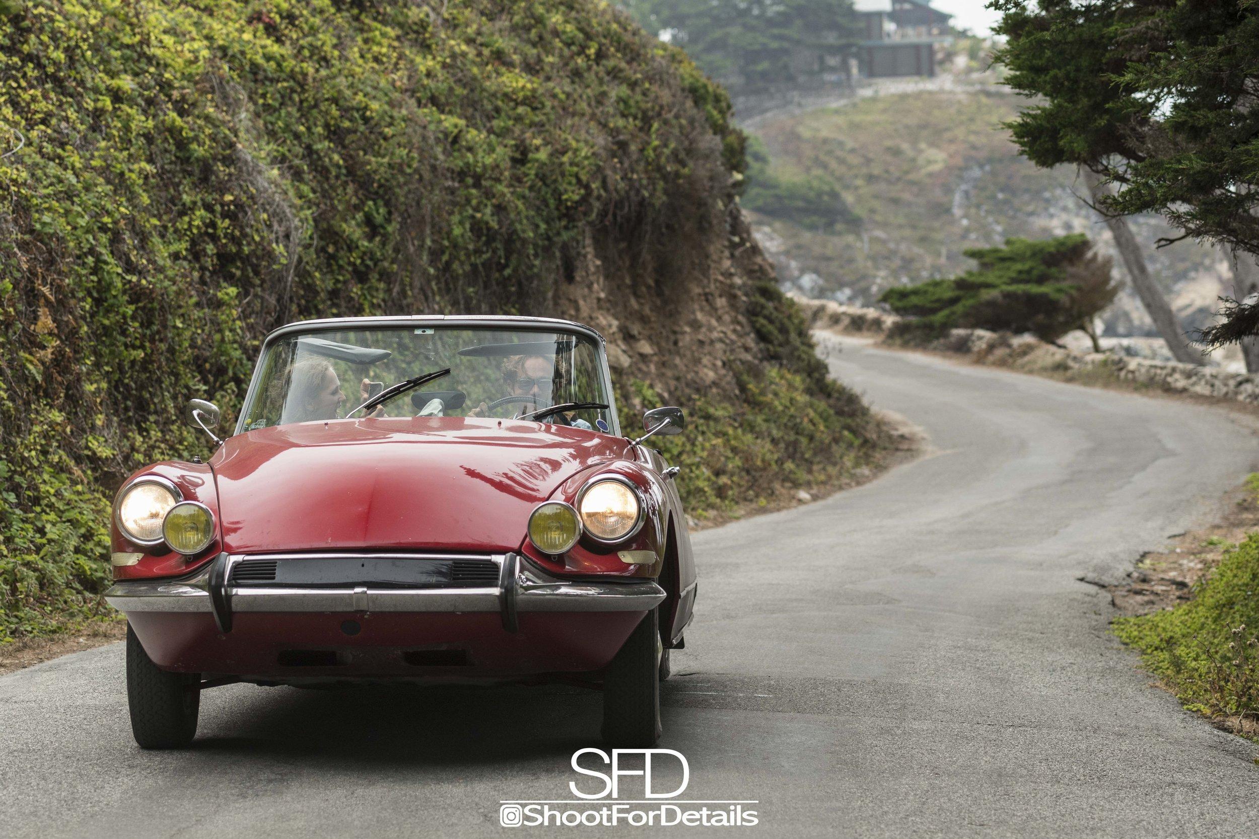 SFD_2993-1.jpg