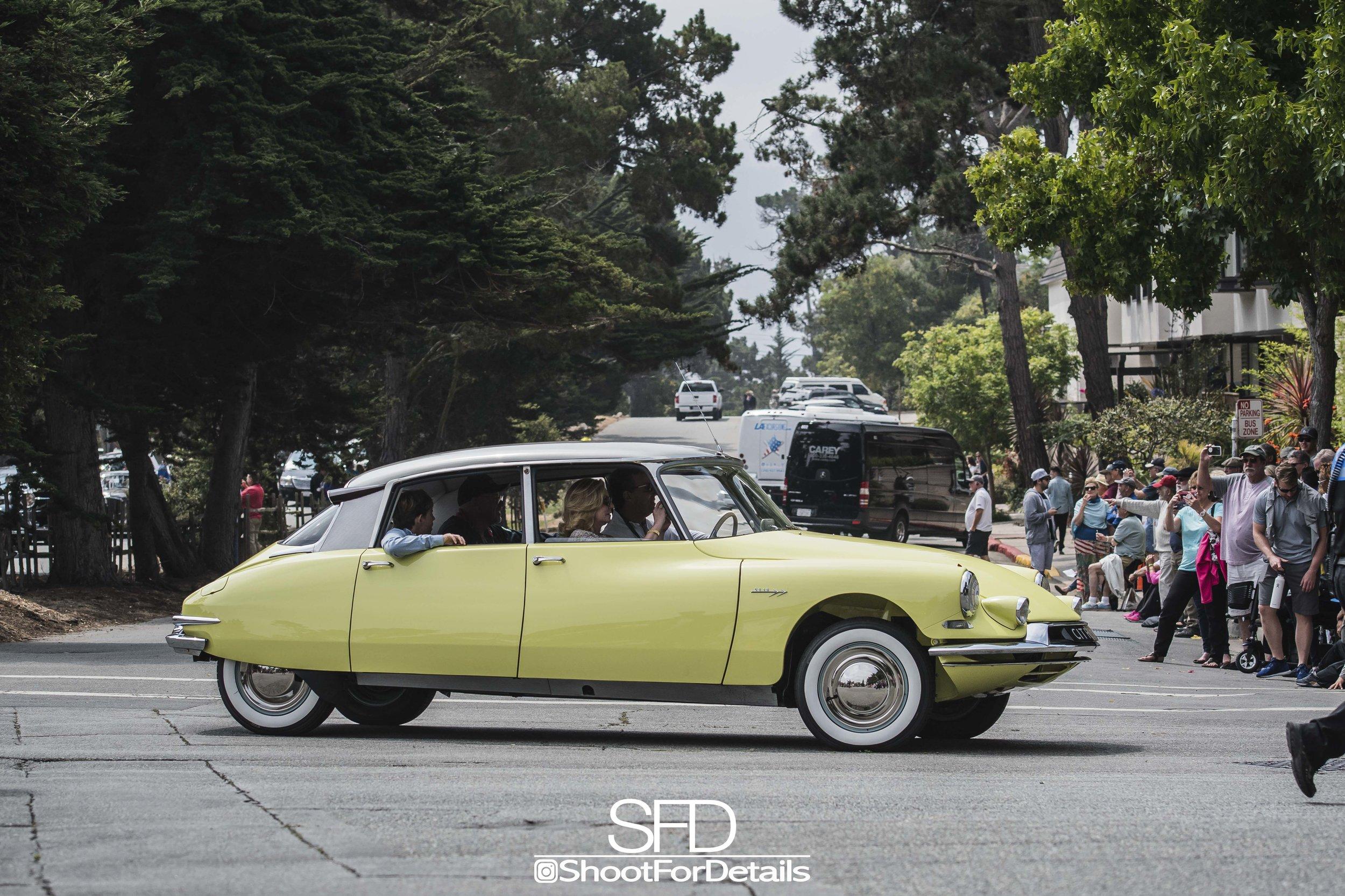 SFD_3572-1.jpg