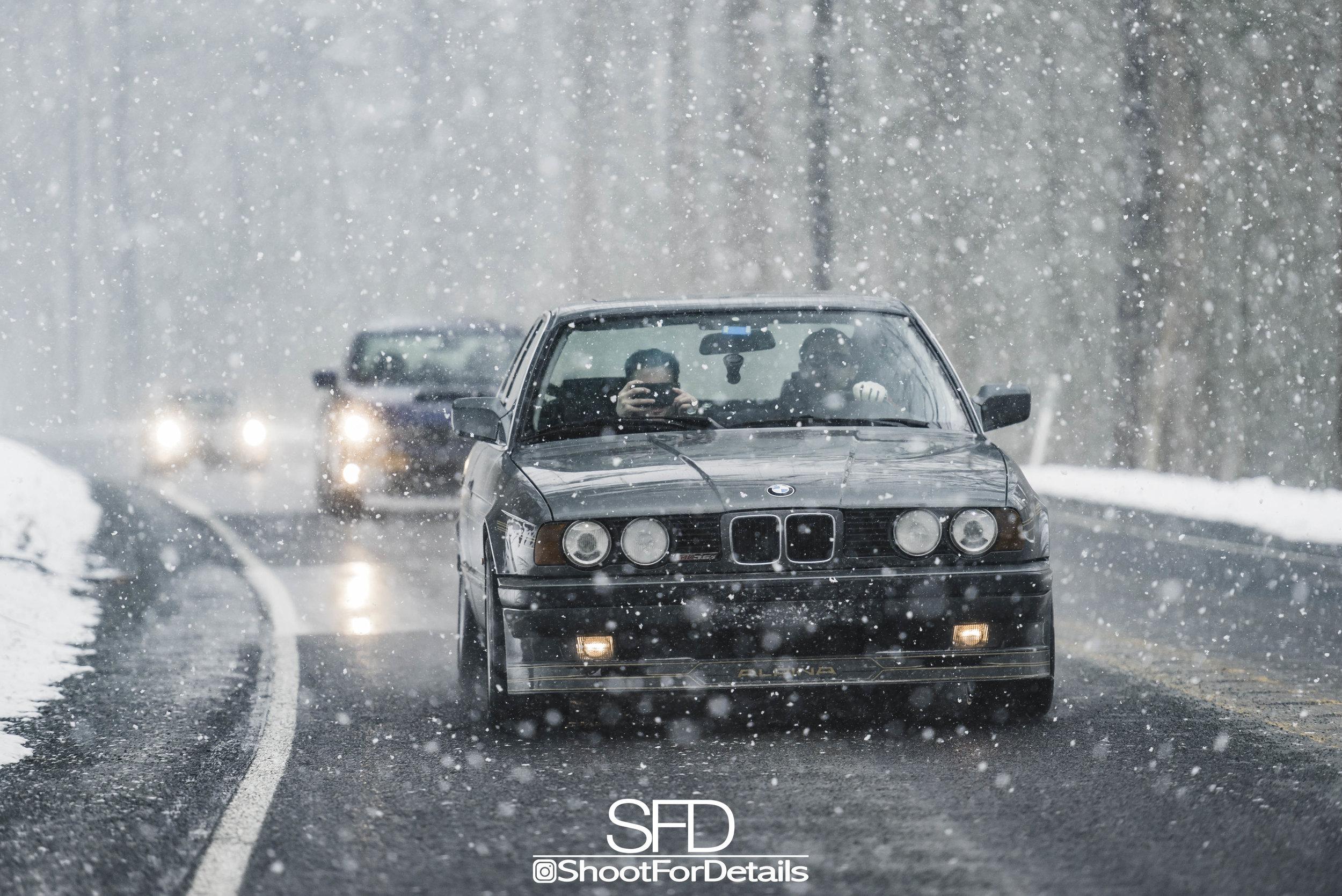 SFD_7252.jpg