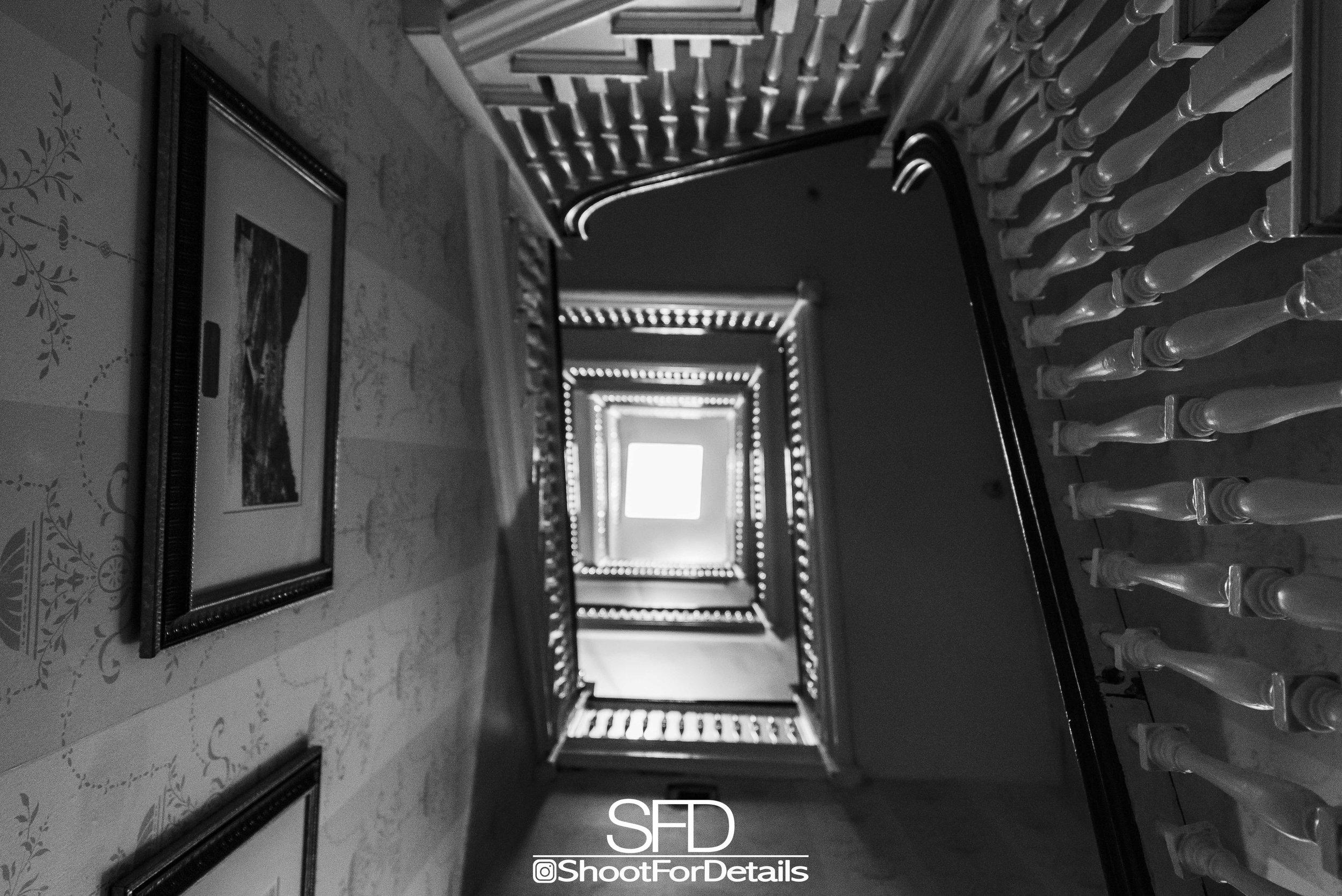 SFD_7883.jpg
