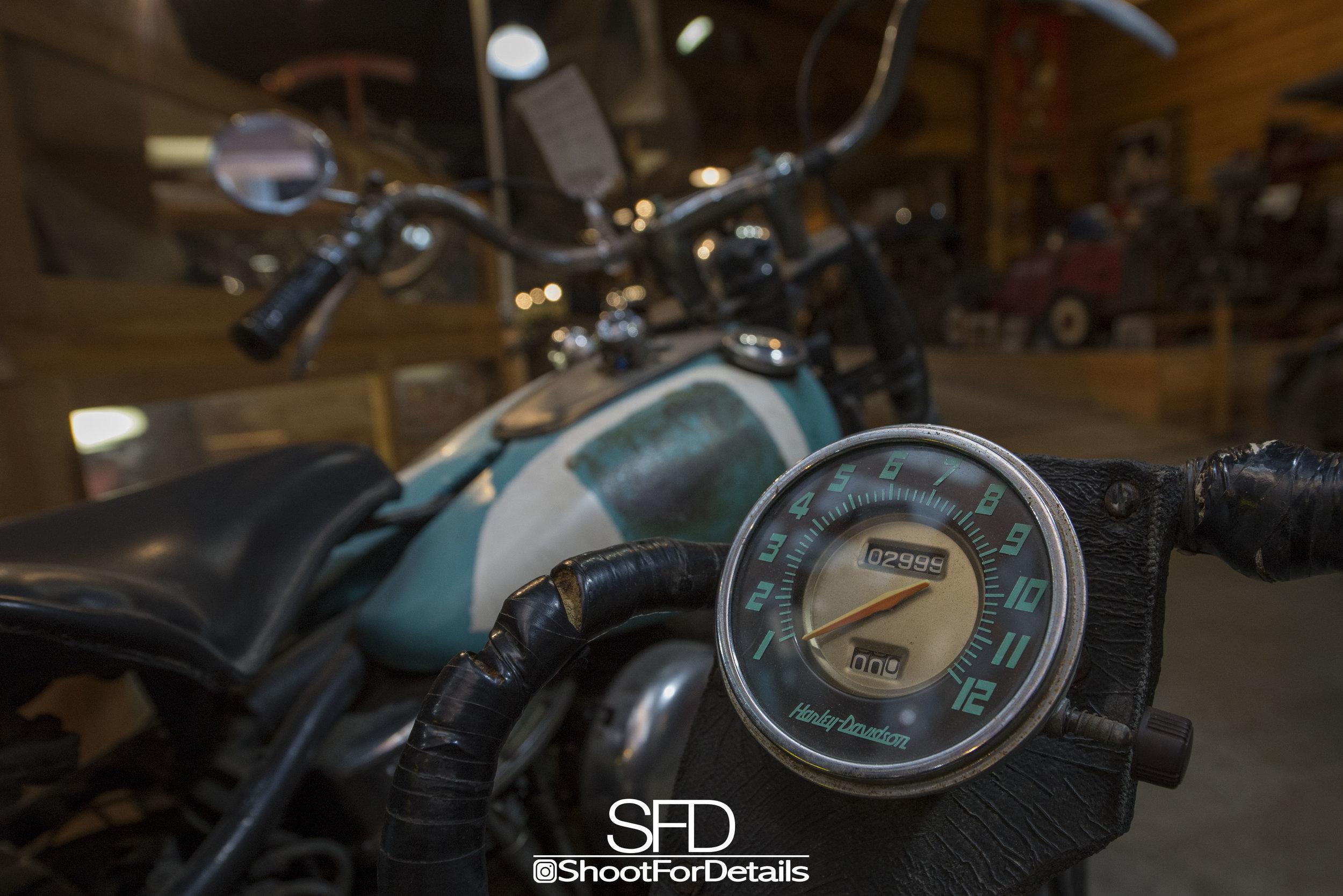 SFD_8418.jpg