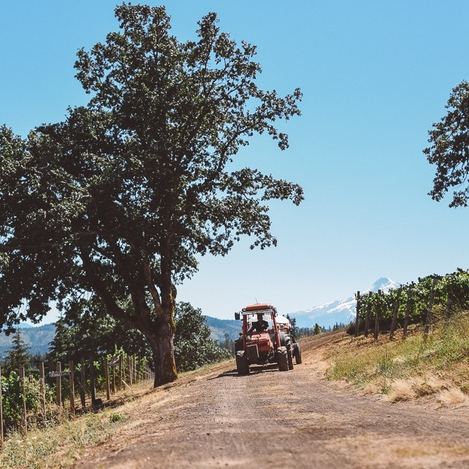 Phelps Creek Vineyards Tractor (2).jpg
