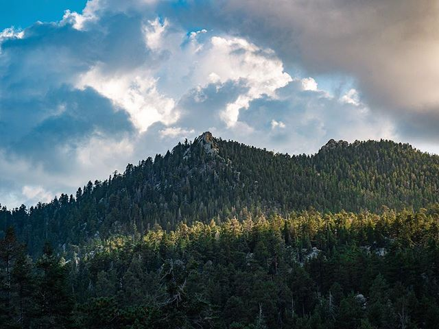 More Epic Mountain Shots!   www.jasenmancilla.photography   #outdoor #nature #forest #jacinto #mountain #green #sky #sunset #warm #wideshot #tree #pine #scenery #blue #background #rocky #sunlight
