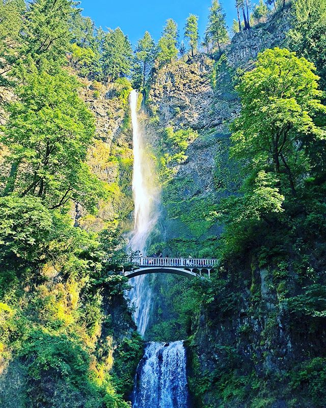 Had the pleasure of visiting Multnomah Falls in Oregon! What a  great view!!   www.jasenmancilla.photography   #waterfall #falls #water #nature #greentrees #bridge #Oregon #Portland