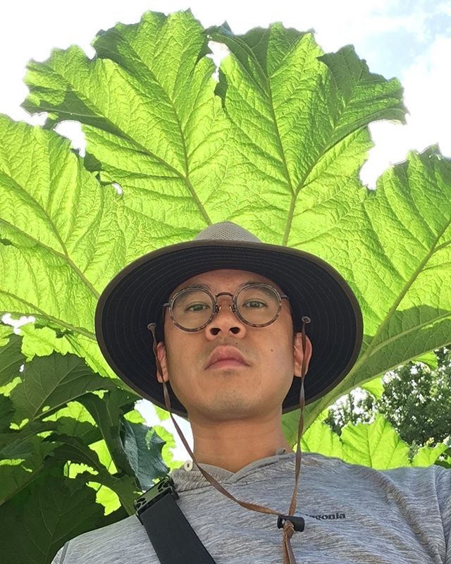 I'm standing under an unbelievably giant leaf. 🌱 was so focused on minimizing neck wrinkles i forgot to smile. I'm gonna visit this park everyday. Expect more pictures of plants!