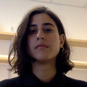 Dina Khatib  PhD student in Anthropology and Middle Eastern Studies at the Center for Middle Eastern Studies, Harvard University