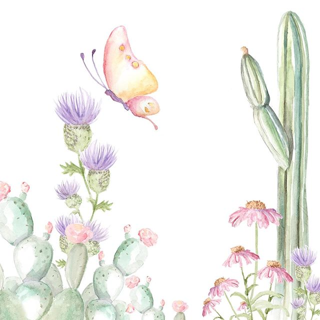 Color in the desert 💕 . . . . #watercolor #thegreatoutdoors #bigbend #texascountry #exploretexas #igtexas #bigebendnps #dsfloral #dslooking #abmlifeisbeautiful #gglocalgems #flashesofdelight #thatisdarling #darlingescapes #painting #watercolor #cacti #artist #create #desertart #desertpainting