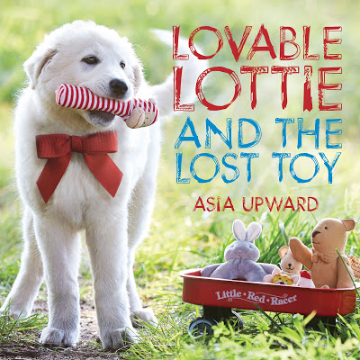 Lovable Lottie and The Lost Toy_Final Cover_Hi Res.jpg