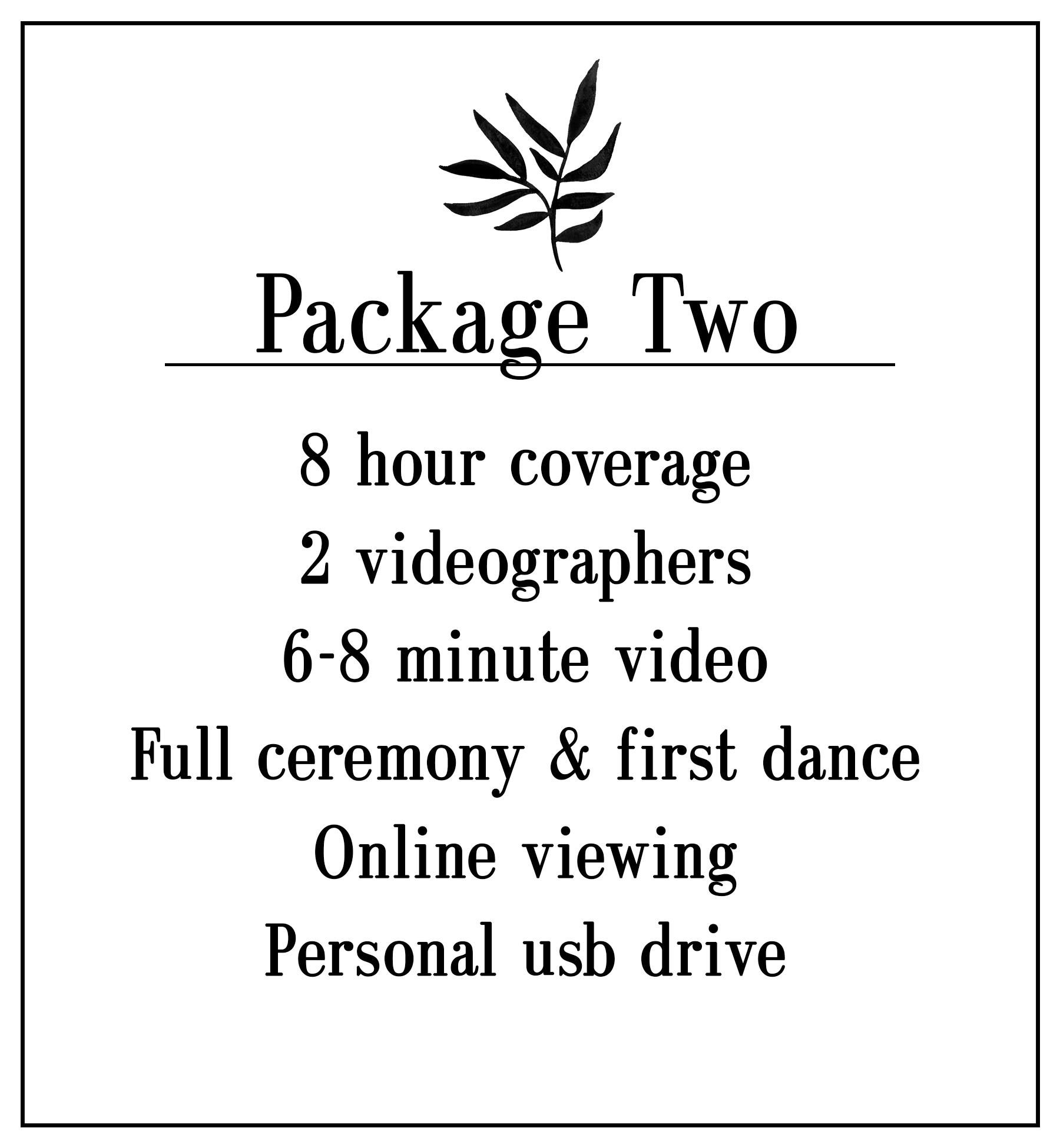 wedding video 2.jpg