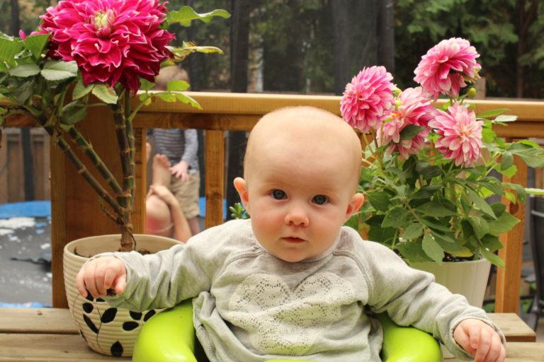 cute baby 2.jpg
