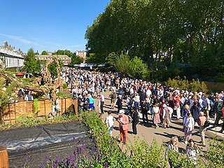 Glorious weather and crowds at the 2019 RHS Chelsea Flower Show