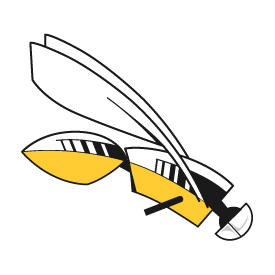 Picture of yellow and black Firefly Logo