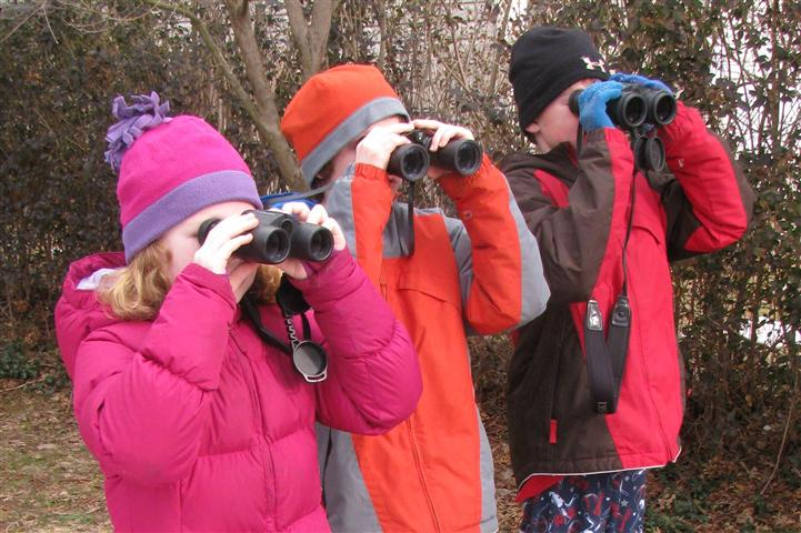 young birders (Small).jpg
