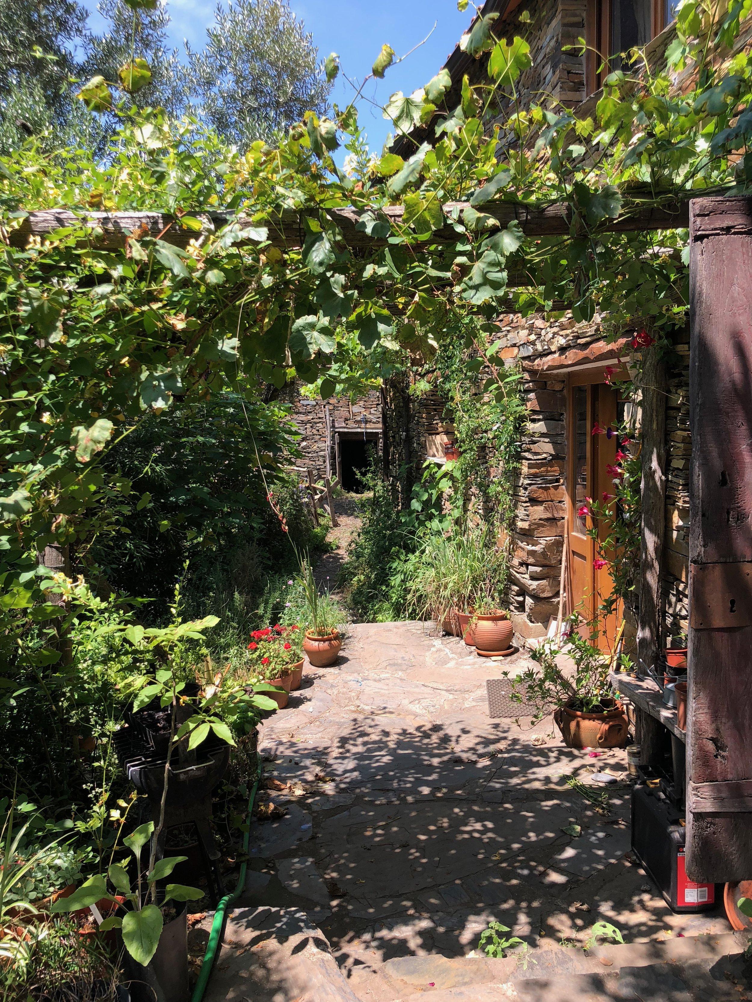 Emma & River's Garden