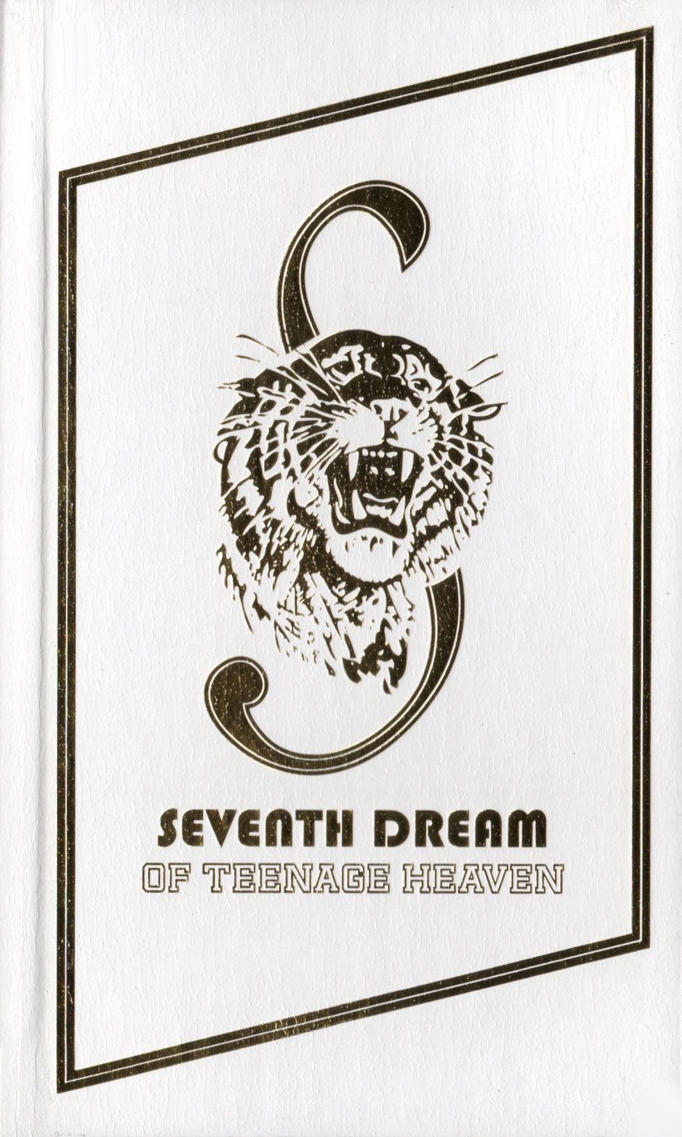 Seventh Dream of Teenage Heaven.jpeg