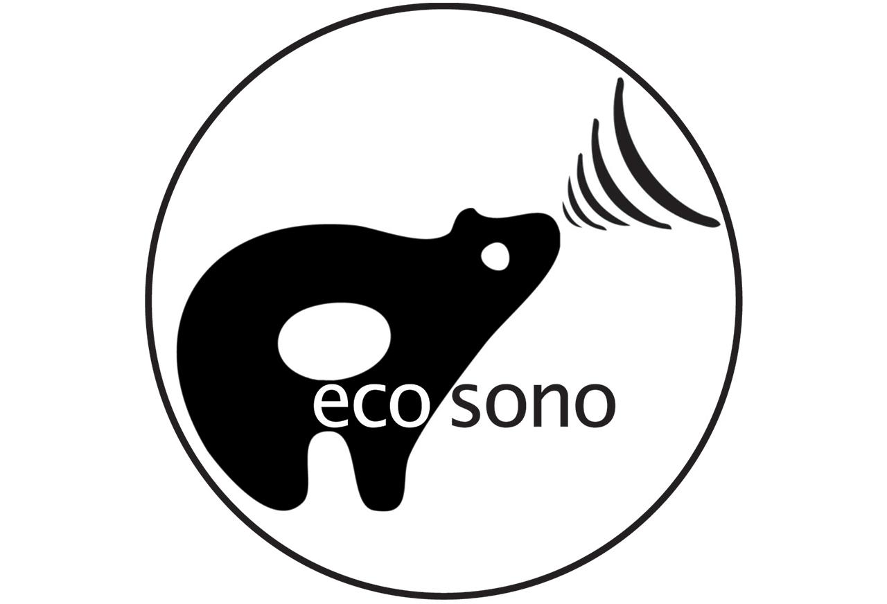 EcoSono Institute, 2013-19