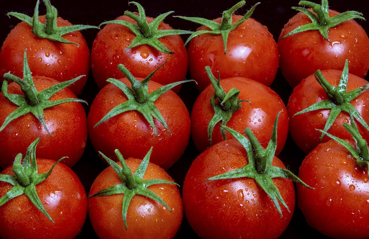 tomatoes-3900264_1280.jpg
