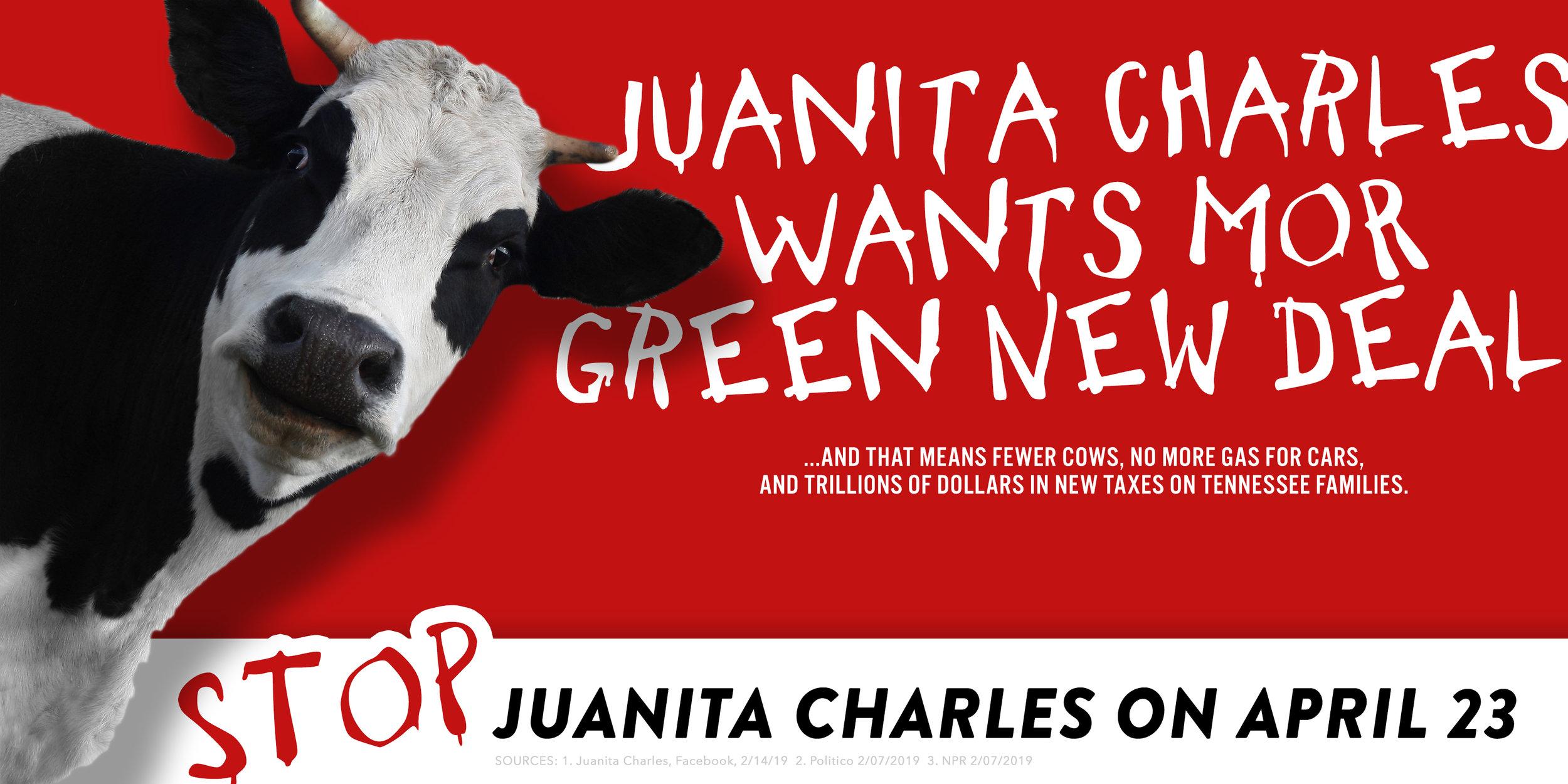 Direct-Edge-Portfolio-STOP-JUANITA-CHARLES-GREEN-NEW-DEAL_Page_1.jpg