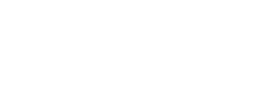 Undivided+Wealth+Management+w.png