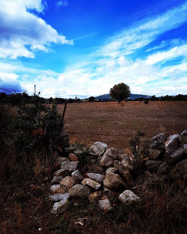 #trek #trekking #wild #wildlife #nature #amazingplace #freedom #thinkaboutlife #taketime #enjoy #summertime #mazanares #madrid #spain #europe