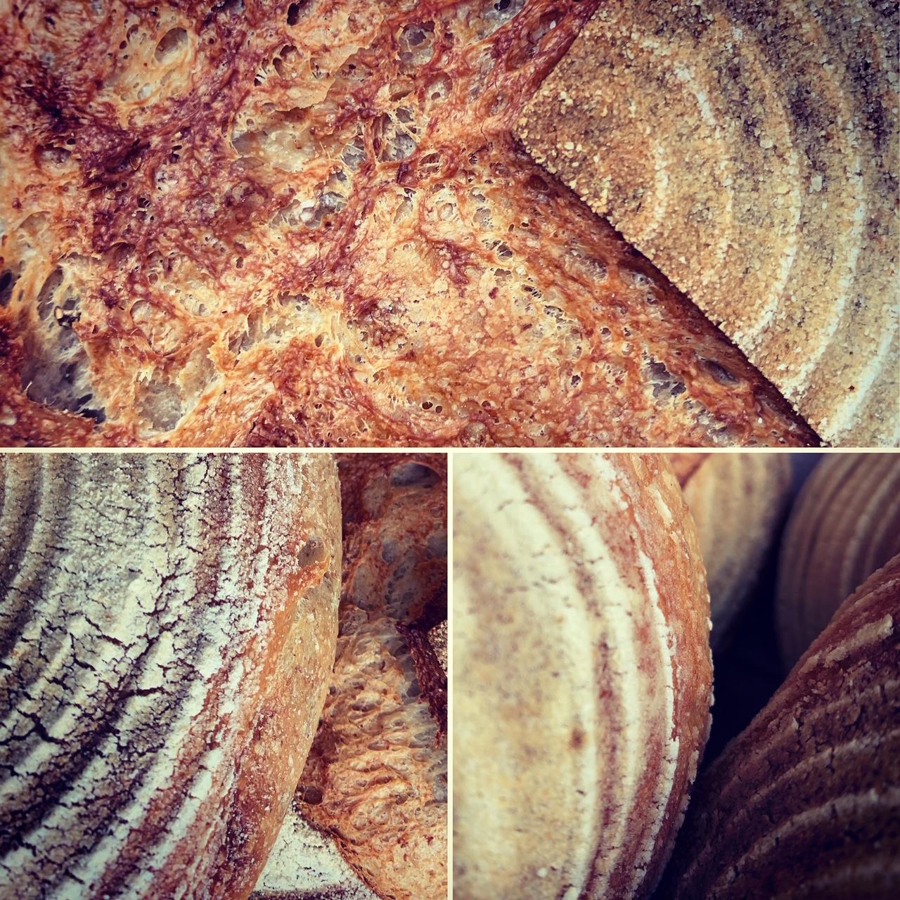 Bread, cake, scones, pakoras or pies… sweet or savoury, we have a LOT of baking ingredients at Re