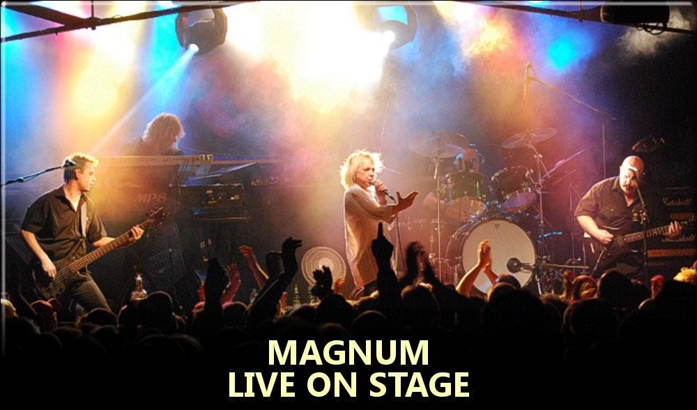 V - Magnum 2.jpg