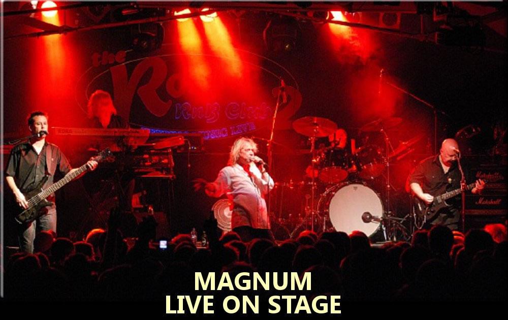 V - Magnum Pic.jpg