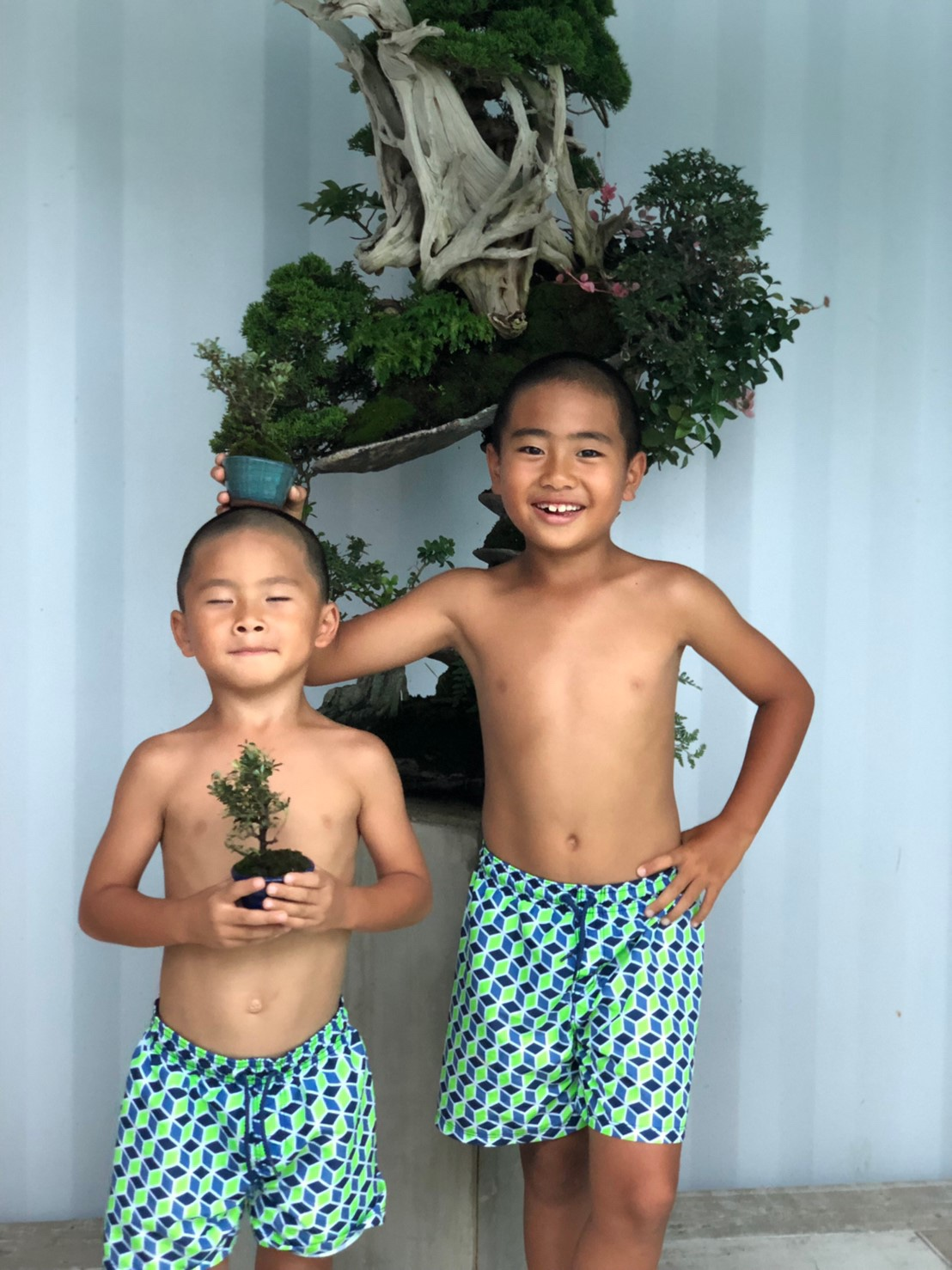 平尾成志の盆栽を楽しむ子どもたち