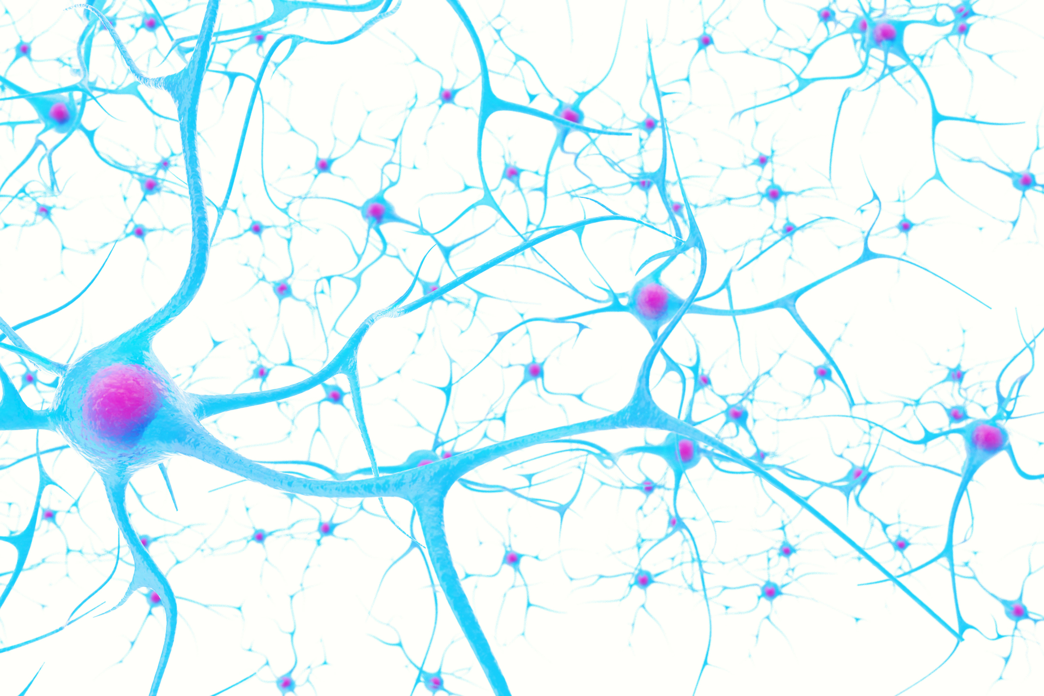 Neurons in the brain on white background with focus effect 3d illustration