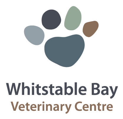 PARTNERS - Want to know more about who we work with to ensure the very best of care for your dog.