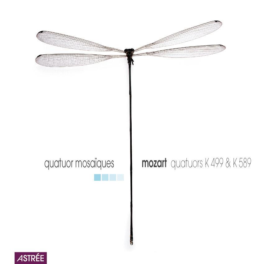 E8834 Mosa?ques Mozart.jpg