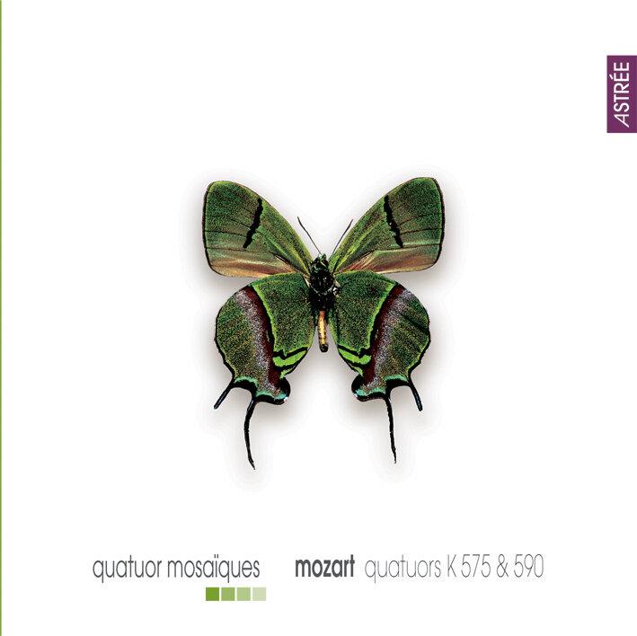 E8888 Mosa?ques Mozart.jpg