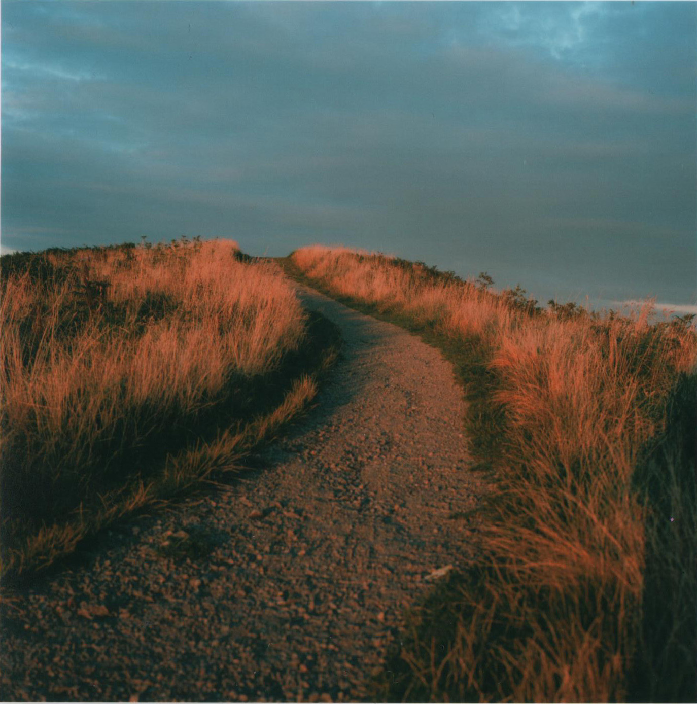Path f8 125th sec.jpg