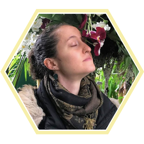 LaurenRothman For The Heal Hive