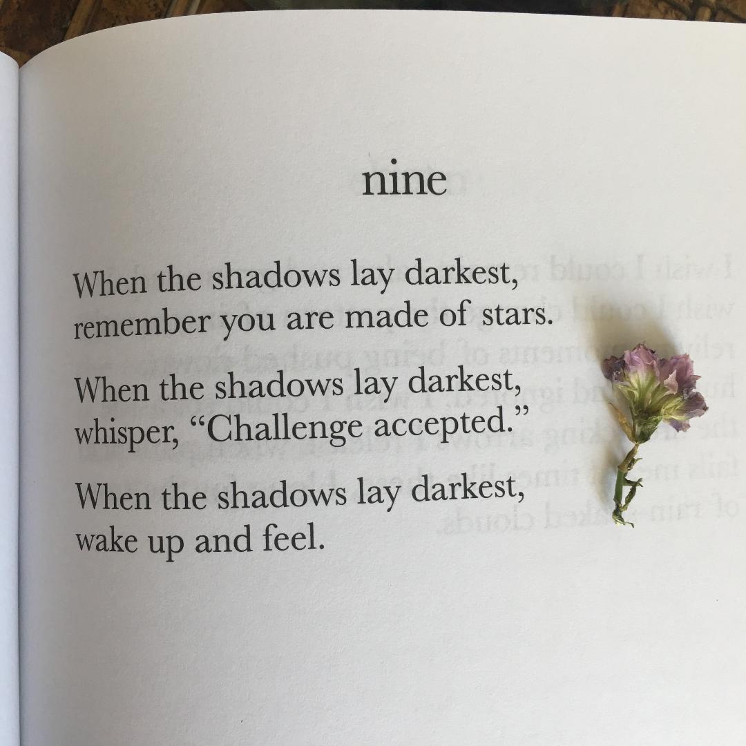 nine-theshebook.jpeg