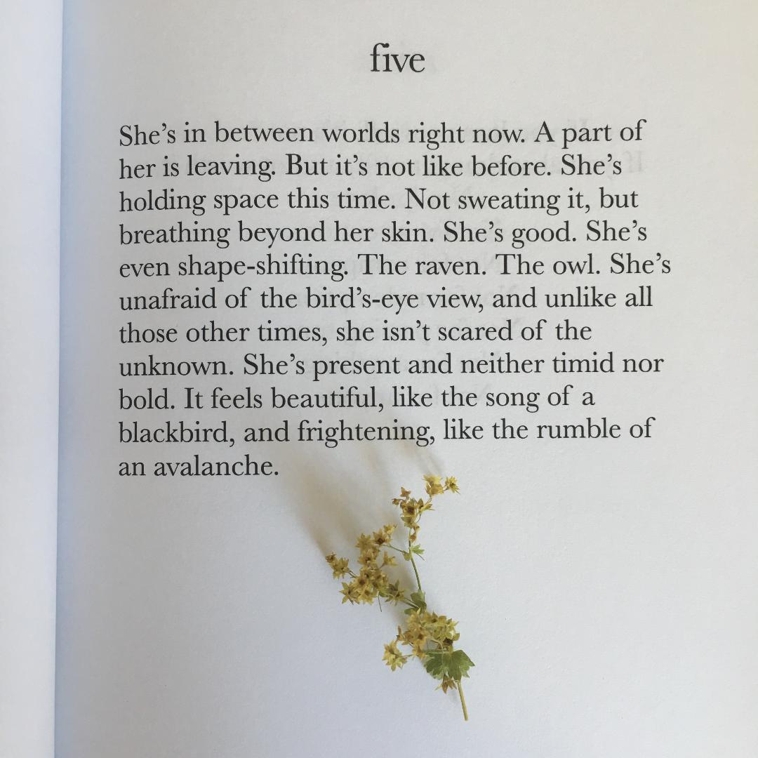 five-theshebook.jpeg