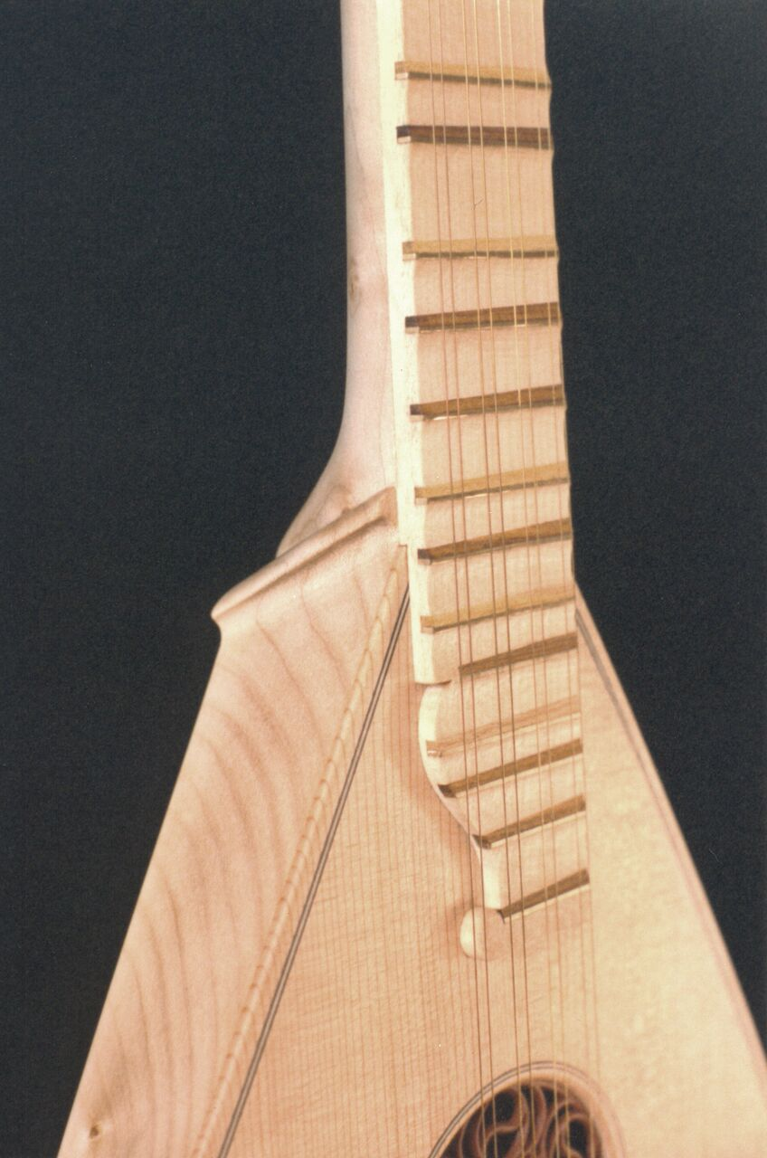 Campi Cittern detail 1 - edited_preview.jpeg